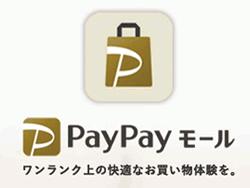 PayPayモール モッピー