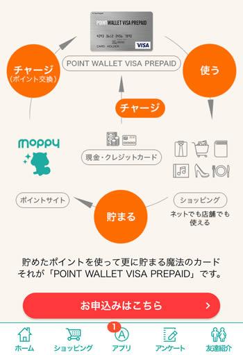 wallet_visa4